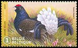 Cl: Black Grouse (Tetrao tetrix) SG 4703b (2017)