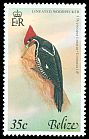 Cl: Lineated Woodpecker (Dryocopus lineatus) SG 490 (1979) 85