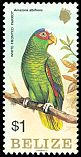 Cl: White-fronted Parrot (Amazona albifrons) SG 806 (1984) 175