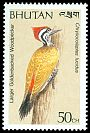 Cl: Greater Flameback (Chrysocolaptes lucidus) SG 812 (1989) 10