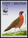 Cl: Satyr Tragopan (Tragopan satyra)(Endemic or near-endemic)  SG 1738c (2003)