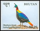 Cl: Himalayan Monal (Lophophorus impejanus)(Repeat for this country)  new (2017)