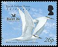Cl: Black-naped Tern (Sterna sumatrana) SG 355b (2006) 175 [5/46]