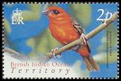 Cl: Red Fody (Foudia madagascariensis)(Repeat for this country)  SG 296 (2004) 20 [3/2] I have 3 spare [1/24]