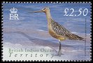 Cl: Bar-tailed Godwit (Limosa lapponica) SG 307 (2004) 700 [3/2] I have 2 spare [1/24]