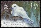 Cl: White Tern (Gygis alba)(Repeat for this country)  SG 300 (2004) 100 [3/2] I have 2 spare [1/24]