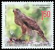 Cl: Northern Goshawk (Accipiter gentilis) SG 551 (2011)