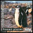 Cl: Gentoo Penguin (Pygoscelis papua)(Repeat for this country) (I do not have this stamp)  SG 563 (2011)