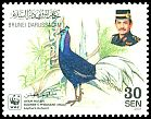 Cl: Bulwer's Pheasant (Lophura bulweri) <<Ayam Hutan>> (Endemic or near-endemic)  SG 678 (2001) 110 [8/8]