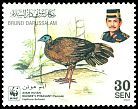 Cl: Bulwer's Pheasant (Lophura bulweri) <<Ayam Hutan>> (Endemic or near-endemic)  SG 680 (2001) 110