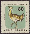 Cl: Great Bustard (Otis tarda) SG 1239 (1961) 300