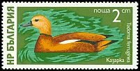 Cl: Ruddy Shelduck (Tadorna ferruginea) SG 2456 (1976) 20