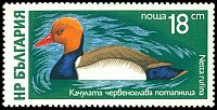 Cl: Red-crested Pochard (Netta rufina) SG 2460 (1976) 375