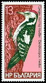 Cl: Middle Spotted Woodpecker (Dendrocopos medius) SG 2683 (1979) 95