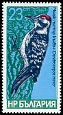 Cl: Lesser Spotted Woodpecker (Dendrocopos minor) SG 2684 (1979) 140