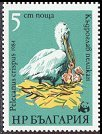 Cl: Dalmatian Pelican (Pelecanus crispus)(Repeat for this country)  SG 3183 (1984) 45