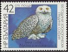Cl: Snowy Owl (Bubo scandiacus)(Out of range)  SG 3524 (1988) 100