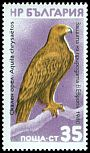 Cl: Golden Eagle (Aquila chrysaetos)(not catalogued)  (1980) 0