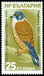 Cl: Eurasian Kestrel (Falco tinnunculus)(not catalogued)  (1980) 0