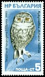 Cl: Little Owl (Athene noctua)(Repeat for this country) (not catalogued)  (1980)