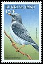 Cl: Red-legged Thrush (Turdus plumbeus)(Out of range)  SG 1203 (1998) 95