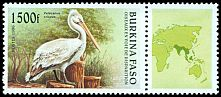 Cl: Dalmatian Pelican (Pelecanus crispus)(Out of range) (not catalogued)  (1996)