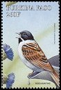 Cl: Reed Bunting (Emberiza schoeniclus)(Out of range)  SG 1206e (1998) 125