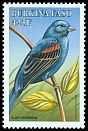 Cl: Blue Grosbeak (Passerina caerulea)(Out of range)  SG 1205 (1998) 275