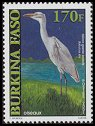 Cl: Cattle Egret (Bubulcus ibis) new (2001)  [2/8]