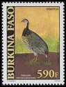 Cl: Double-spurred Francolin (Francolinus bicalcaratus) new (2001)