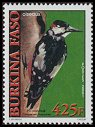 Cl: Great Spotted Woodpecker (Dendrocopos major)(Out of range)  new (2001)  [2/8]