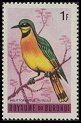 Cl: Little Bee-eater (Merops pusillus)(Repeat for this country)  SG 128 (1965) 10 [3/10]