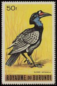 Cl: Abyssinian Ground-Hornbill (Bucorvus abyssinicus) SG 140 (1965) 240 [3/10]