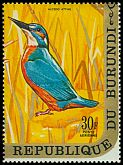 Cl: Common Kingfisher (Alcedo atthis)(Out of range)  SG 579 (1970) 225