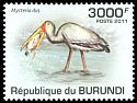 Cl: Yellow-billed Stork (Mycteria ibis)(Repeat for this country)  new (2011)  [7/45]