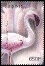 Cl: Lesser Flamingo (Phoenicopterus minor)(Repeat for this country)  SG 1666 (2004)  [3/30]