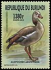 Cl: Egyptian Goose (Alopochen aegyptiacus)(Repeat for this country)  new (2016)