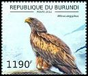 Cl: Black Kite (Milvus migrans aegyptius)(Repeat for this country)  new (2012)  [8/18]