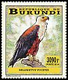 Cl: African Fish-Eagle (Haliaeetus vocifer)(Repeat for this country)  new (2014)