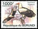 Cl: Palm-nut Vulture (Gypohierax angolensis)(Repeat for this country)  new (2011)  [7/39]