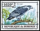 Cl: Augur Buzzard (Buteo augur)(I do not have this stamp)  new (2013)