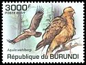 Cl: Wahlberg's Eagle (Aquila wahlbergi) new (2011)  [7/39]
