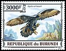 Cl: Verreaux's Eagle (Aquila verreauxii)(Repeat for this country)  new (2013)