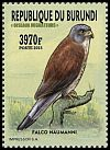 Cl: Lesser Kestrel (Falco naumanni)(I do not have this stamp)  new (2016)
