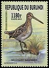 Cl: Common Snipe (Gallinago gallinago)(I do not have this stamp)  new (2016)