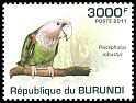 Cl: Brown-necked Parrot (Poicephalus robustus) new (2011)  [7/45]