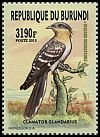 Cl: Great Spotted Cuckoo (Clamator glandarius) new (2016)