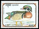 Cl: Wood Duck (Aix sponsa)(Out of range)  SG 1326 (1993) 240