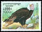 Cl: Bald Eagle (Haliaeetus leucocephalus)(Out of range)  SG 1942 (1999) 375