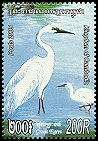 Cl: Great Egret (Ardea alba) new (2005)  [5/12]
